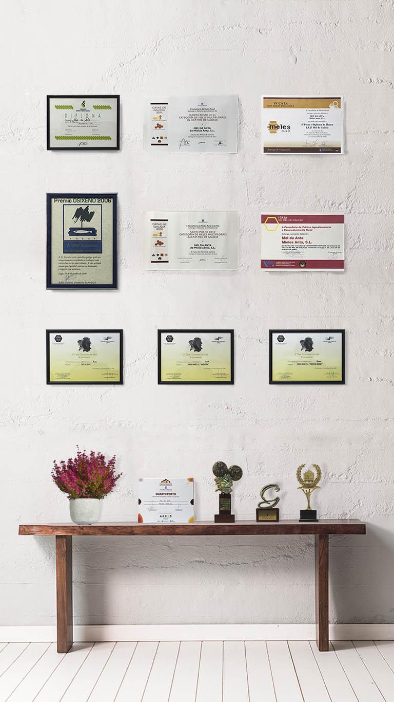 Premios de Mieles Anta